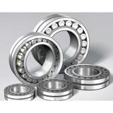 NSK 6004du Bearing Japan Original NSK Deep Groove Ball Bearings 6004du 6005DU2